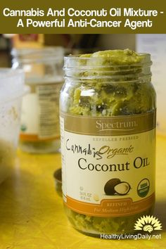 Cannabis And Coconut Oil Mixture – A Powerful Anti-Cancer Agent