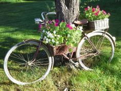 My little garden; Bicycle, Outdoors, Gardening, Flowers, Bicycle Kick, Garten, Bike, Lawn And Garden, Garden