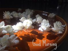 Wow Travel, Good Morning Flowers, Good Morning Quotes, Mornings, Angel, Night, Painting, Angels, Painting Art