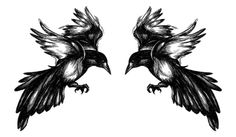 Two I Tattoo, Cool Tattoos, Magpie Tattoo, Raven, Rooster, Fairy Tales, Tattoo Designs, Drawings, Animals