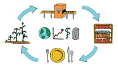 MOOC Uni. of Minnesota -   Sustainability of Food Systems: A Global Life Cycle Perspective | Coursera