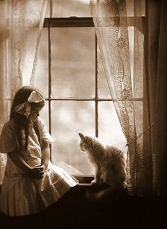 marjorie sholes with cat in the window , early 1900s. photo by william H. manahan jr.