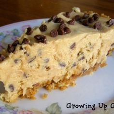 Peanut Butter Chocolate Chip Pie - A super easy, homemade pie!