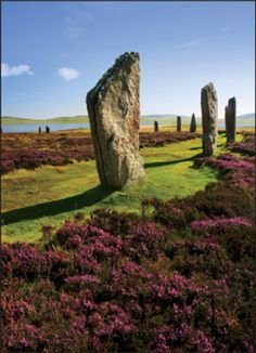 ORKNEY ISLANDS SCOTLAND- wish I could have made it here
