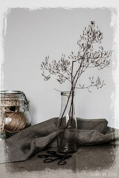 Dried wild weeds in a bottle and Donna's linen tea towel... | par odile lm