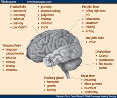 First Symptoms of Brain Tumors | Brain Tumor Symptoms