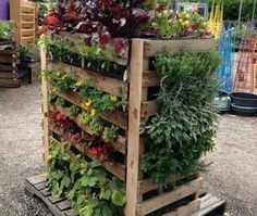 Pallet Vertical Gardening