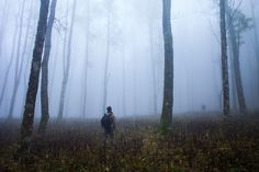 ME ON THE FIELD - FORESTE CASENTINESI by Matteo  Sigolo on 500px