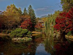 Fall in South Korea