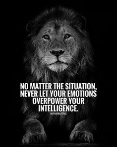 Motivation Quotes : 342 Motivational Inspirational Quotes About Success 120 Visitez la boutique. - About Quotes : Thoughts for the Day & Inspirational Words of Wisdom Motivacional Quotes, Wisdom Quotes, True Quotes, Quotes To Live By, Funny Quotes, Famous Quotes, Qoutes, Short Quotes, Deep Quotes