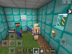 Me and my sister played minecraft