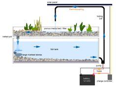 Solar Powered Aquaponics Pump System