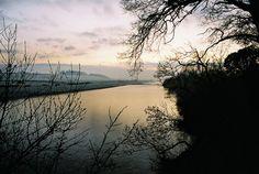 River Tweed North East of Kelso, Scotland.