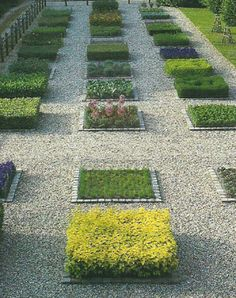 A Picture of modern potager garden