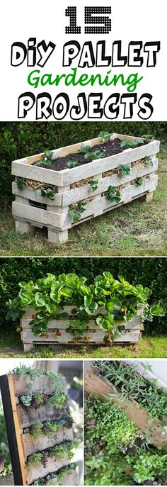 Top 15 Pallet Gardening Projects