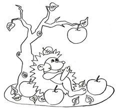 Hérisson et pommes d'automne