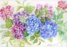 Hortensias by Anne Marie Patry Belluteau Anne-Marie Party-Bluteau, flowers painting, watercolor art Art Floral, Watercolor And Ink, Watercolor Flowers, Watercolor Paintings, Botanical Flowers, Botanical Prints, Flower Prints, Flower Art, Hydrangea Painting