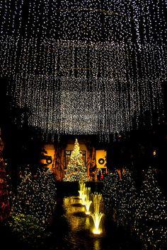 ooOOoOOooOOO lights!!
