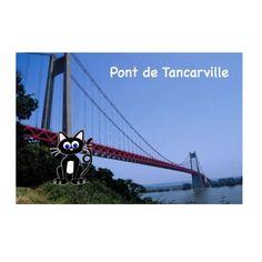 Knot Pont de Tancarville conquered #knotthecat #bridges #bridge #fear #phobia #pontdetancarville #pont