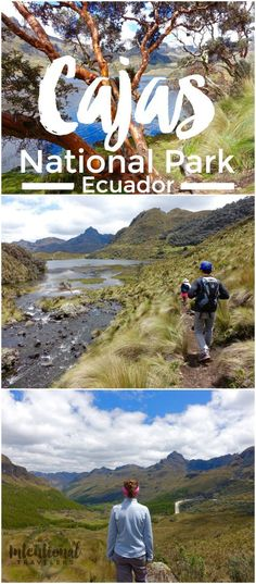 Cajas National Park is a UNESCO-protected site just outside of Cuenca, Ecuador. How to get there, what to pack, costs, and map.