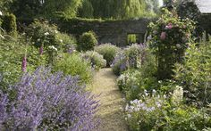 Portfolio garden 3 - Arne Maynard Garden Design