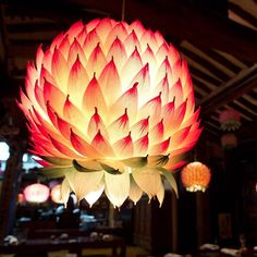 Lotus lantern from a restaurant in Seoul