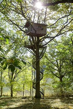 Image: Interior of a treehouse in Foret de Rambouillet, France, perched on an oak tree. (© Sipa Press/Rex Features)