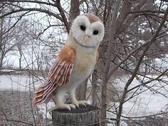 Barn Owl Custom Needle Felted Sculpture by AmandaDoster on Etsy