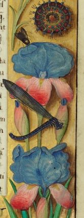 Decorated Text Page (detail), Master of the Getty Epistles, about 1520-30