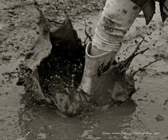 "The world is mud-luscious and puddle-wonderful."" ~ E.E. Cummings  8×8 Mud Puddles Photograph by Green Wheelbarrow Photography"