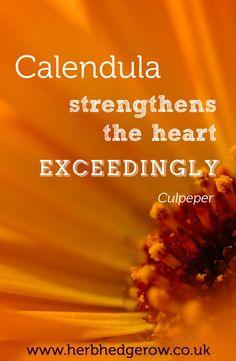 Herbal Quote Calendula Culpeper