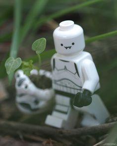 Taking a beautiful piece of Endor back to Death Star... . #stormtrooperfrank #stormtrooper #starwars #endor #lego #minifiguresbigworld #afol #legominifigures #toyslagram_lego #instalego #legostagram #brickcentral #legoart #legography #legogram #joecowlego #brickpichub #bricknetwork #toyartistry_lego #lego_hub #brickshift #vitruvianbrix #stuckinplastic #brickculture #toy_photographers #utahtoycrew #toydiscovery #legonofilterfriday