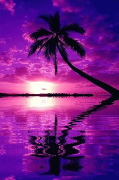 Landscape Animated Gif Water Reflections Landscapes Animated Landscape Animated Landscapes Sunset Keefers photo by Keefers_ Beautiful Nature Wallpaper, Beautiful Moon, Beautiful Landscapes, Sunset Wallpaper, Wallpaper Backgrounds, Animiertes Gif, Animated Gif, Water Reflections, Fantasy Landscape