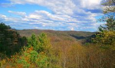View from Natural Bridge (Kentucky, USA)
