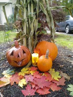 Our Harvest Candle....free shipping for the month of November www.briteideas.biz  Decorate for the season!!