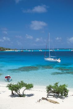 Martinique Island, Lesser Antilles, Caribbean. Some of the bluest waters & great snorkeling