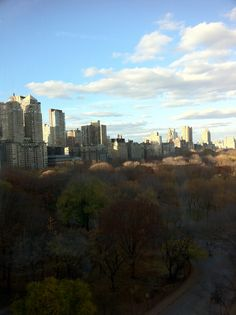 View from the NYAC roof.