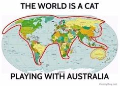 Because sometimes what we need most is to be reminded that the world is a gigantic cat playing with Australia. Suddenly it's no wonder that Australia is home to so many incredibly dangerous animals. Funny Animal Pictures, Funny Animals, Cute Animals, Crazy Cat Lady, Crazy Cats, I Love Cats, Cute Cats, Funny Facts, Funny Memes