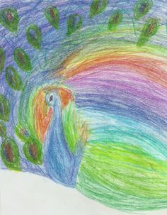 Un intento de pavo real que me llevo a un arcoiris!!!