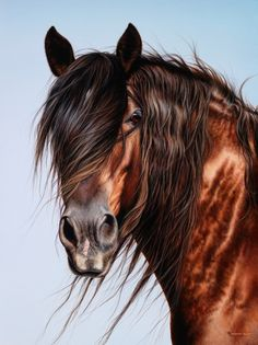 Horse - painting by Shannon Lawlor, western artist. Description from pinterest.com. I searched for this on bing.com/images