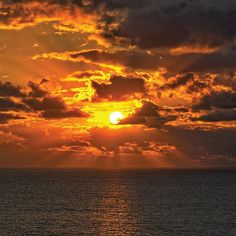 Cayman Island Sunset Or Starlight Cruise By Spur Experiences
