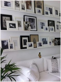 wall of photoframes