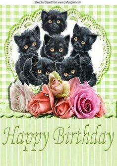 Cute kittens amongst the roses with gingham lace on Craftsuprint designed by Nick Bowley - Cute kittens amongst the roses with gingham Birthday Greetings, Birthday Wishes, Cat Birthday, Happy Birthday, Kitten Cartoon, Kitten Images, Happy B Day, Cat Crafts, Pretty Cards