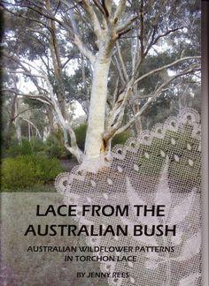 LACE FROM THE AUSTRALIAN BUSH - lini diaz - Álbumes web de Picasa