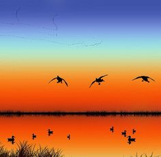 How to Choose the Right Bow for Hunting Dove Hunting, Hunting Art, Hunting Dogs, Hunting Humor, Hunting Stuff, Duck Pictures, Hunting Pictures, Wildlife Paintings, Sunset Paintings