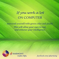 Working a lot on computer? Have problems with eyes? Surround yourself with green color and plants! House Of Chic, Switch Words, Vastu Shastra, Feng Shui Tips, Fire Signs, Color Psychology, Magic Words, Simple Life Hacks, Work Quotes
