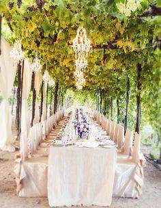 Grapevine Reception Canopy
