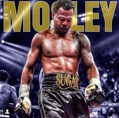 9 best sugar shane images sugar shane mosley boxing boxing champions rh pinterest com