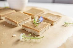 Good old ginger crunch is a Kiwi favourite, and this Raw Ginger Slice recipe is a healthy, vegan alternative. No cane sugar, gluten free.