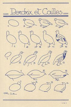 les animaux 41 by pilllpat (agence eureka), via Flickr